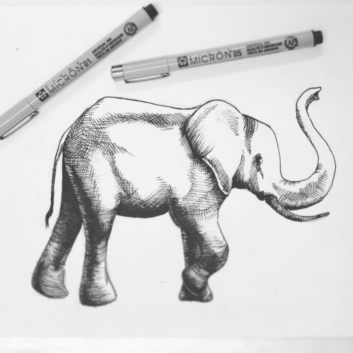 illustration - Elephant